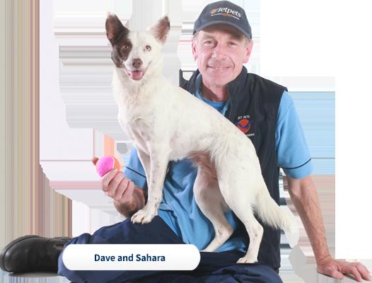 Dave and Sahara