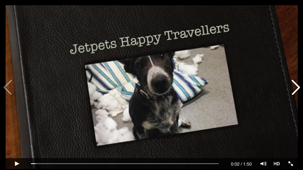 Jetpets Happy Travellers