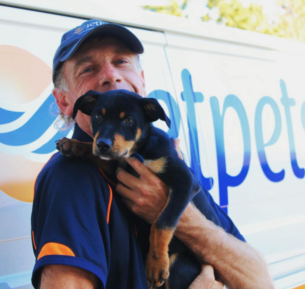 Meet Dave's New Puppy Jet - Jetpets Pet Transport