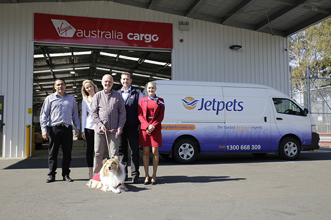 Our Rescue Partnership With Virgin Australia Cargo | Virgin Australia | Jetpets | Airline Approved Dog Crates Australia