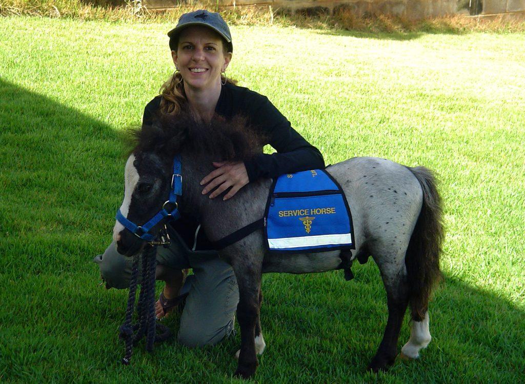 Sprinter | Horse | International Pet Transport | Hawaii | Pet Movers | Pets International