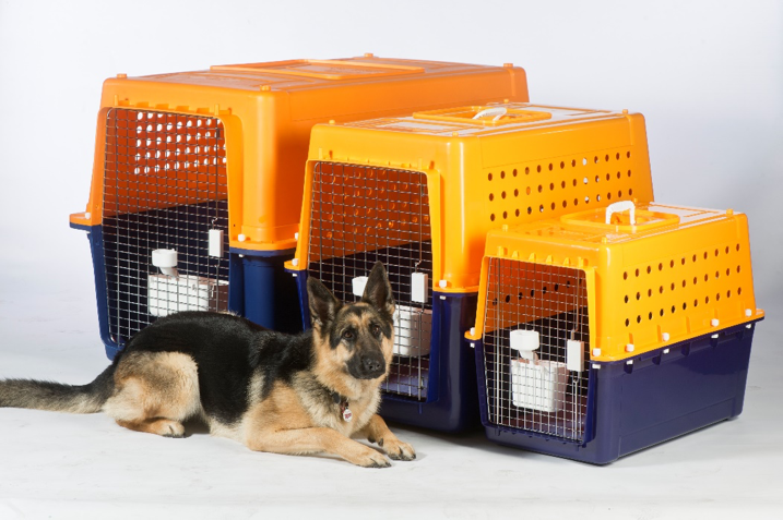 Jetpets travel crates come in a variety of sizes which means there's a crate perfect for your loved one