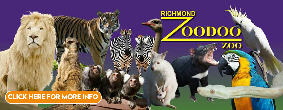 http://zoodoo.com.au/