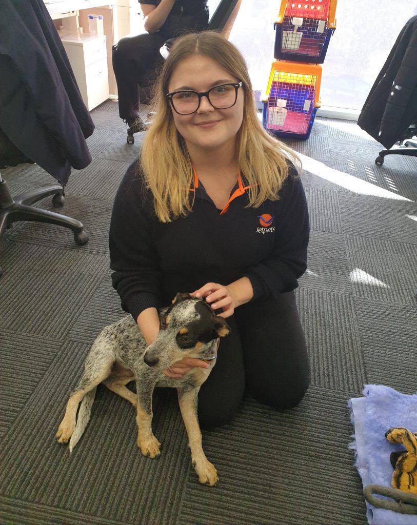 Jetpets | Adopting Digger | Pet Rescue