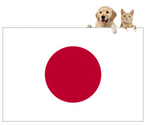 International Pet Transport to Japan