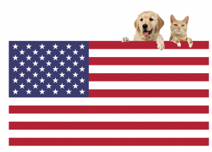International Pet Transport to USA