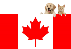 pet transport canada