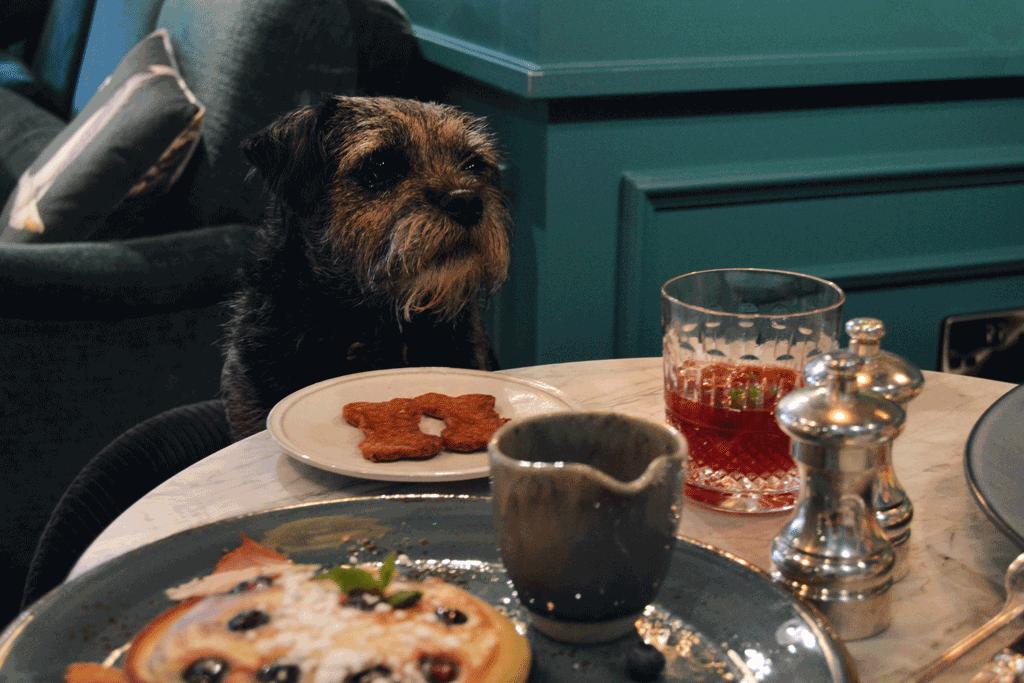 dog friendly restaurant london